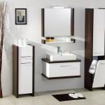 Мебель для ванной (13)