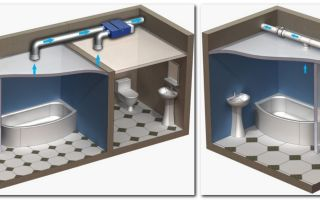 Вентиляция вытяжка санузла, туалета частного дома. Как сделать правильно? (видео)