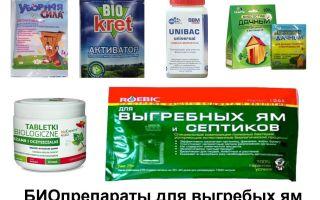 Таблетки для септика